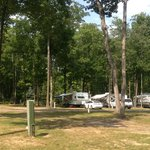 Indian River RV Resort