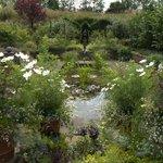 Harlow ~Carr Gardens