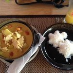 yellow curry with turtle-rice