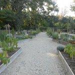 le jardin potager du parc