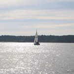 sailing boat on Poole Harbour