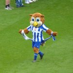 Up the Owls!!!