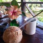 Coconut Love Tropical Terrace Breakfast