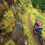 North Umpqua Trail - Mountain Biking the Umpqua National Forest