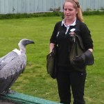 Niamh and Dyson, the African Vulture