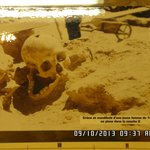 Skull of 16 year old girl that dates back 15,000 years Abri Pataud