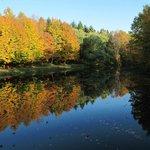 Parco e lago fanno parte della proprietà