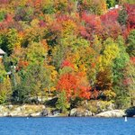 Esplosione di colori del Fall Foliage