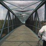 central expressway bridge