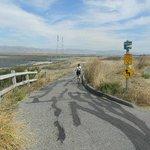 end of trail at san francisco bay