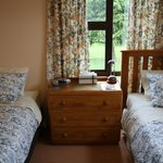 the twin bedroom has a single and a king single bed
