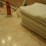 Ungeziefer unter den Handtüchern im Badezimmer