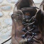 Bug on Boot