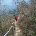 Trail Up The Mountainside