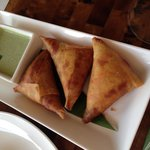 Spiced Chicken Samosas