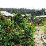 Beautiful Garden surround