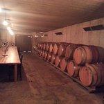 Ravine Cellar