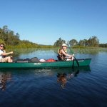 Paddling across Figtree Lake, part of the Noosa Everglades