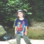 Dane Hodges in the Borneo rainforest