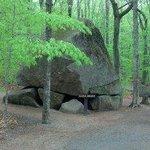 Huge Leftover boulder from Ice Age