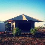 Eco tent accommodation