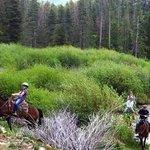 Beaver Meadows Stables