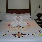 So wurden wir empfangen ;) Unser Honeymoon Spezial!