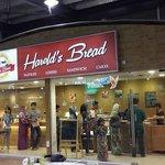 Harold Bread