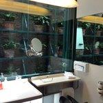 Bathroom overlooking private atrium