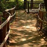 great walking paths