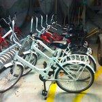 Leje af gode cykler