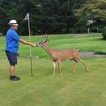 Husband playing golf with 'BOB'