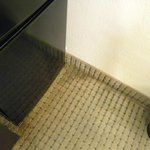 Stained carpeting