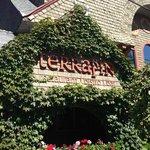 Terrapin, Rhinebeck, NY