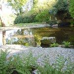 The Japanese Garden 2
