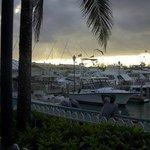 Port Lucaya Marina, 2005