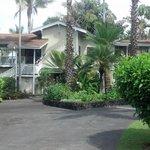 Areca Palms Estate B&B, front view