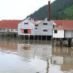 A part of the cannery