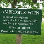 Ambrosius egen