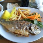 fish denis