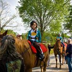 Exceptional Equestrians is a great way to volunteer on the Greenway!
