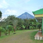 view arenal