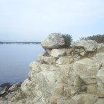 Bluff Point