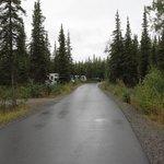 Campground loop road