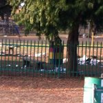Filth Dirty Alexandra Park