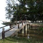 Очаровательный мостик к пляжу