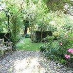 un coin ombragé du jardin