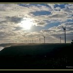 Turbines against the setting sun
