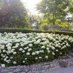 glorious gardens abound