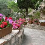 The garden at the garden Tomb